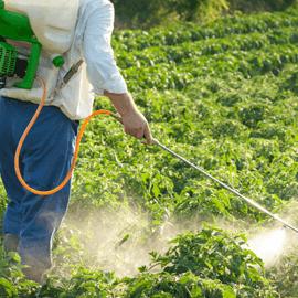 Ozono en la Agricultura